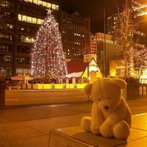 Ten Steps to Freedom from Loneliness at Christmas